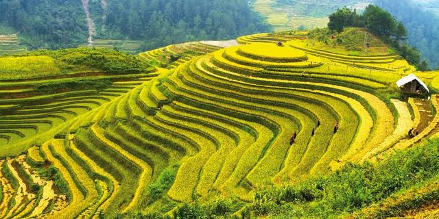 Velká cesta Vietnamem